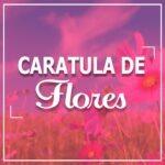 Caratula para cuadernos flores